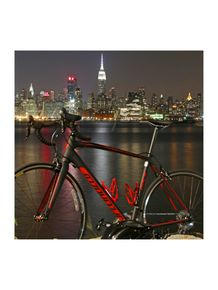 quadro-bike-big-apple