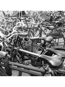 quadro-bikes-in-amsterdam