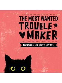 quadro-cat-trouble-maker-1