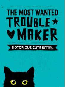 quadro-cat-trouble-maker-2