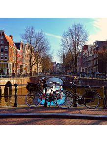 quadro-amsterdam-canal-bikes
