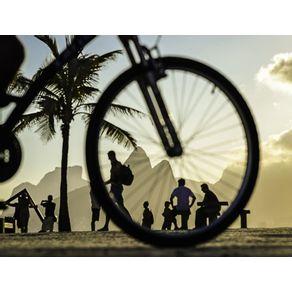 quadro-arpoador-de-bicicleta