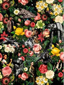 quadro-starwars-and-floral-pattern