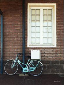 quadro-bicicleta-na-janela