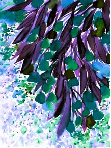 quadro-botanical-regency-4