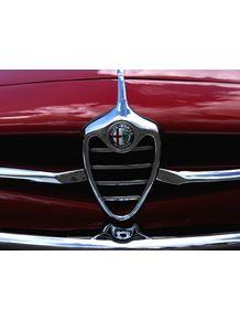 quadro-old-cars--alfa