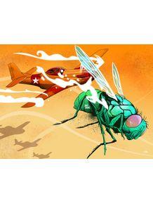 quadro-mosca-e-avioes