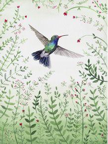 quadro-beija-flor-aquarela