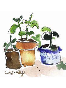 quadro-vasinhos-aquarela