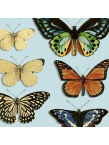 quadro-borboletas-azul