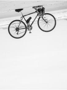 quadro-a-bike-voadora