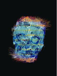 quadro-skull-fauna