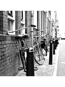 quadro-amsterdan-bike