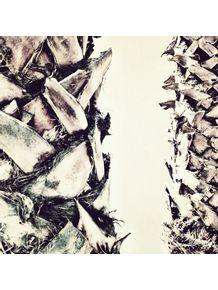 quadro-natureza-viva-xxvi