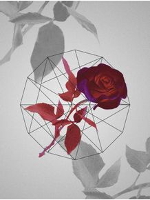 quadro-rosemetric