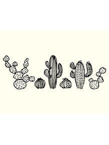 quadro-cactus-family