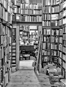 quadro-bookstore-02