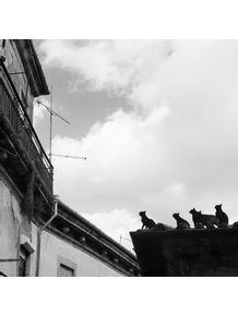 quadro-gatos-no-telhado