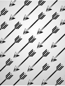 quadro-flechas