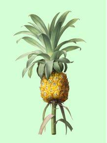 quadro-abacaxi-e-verde-i