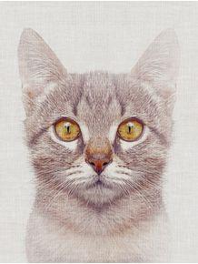 quadro-cat-3