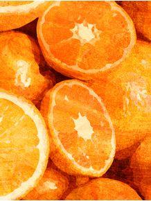 quadro-frutas--laranja