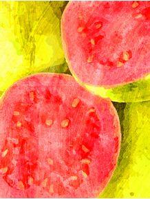 quadro-frutas--goiaba