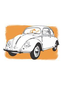 quadro-pop-beetle