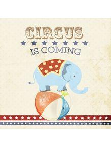 quadro-circus-elefante