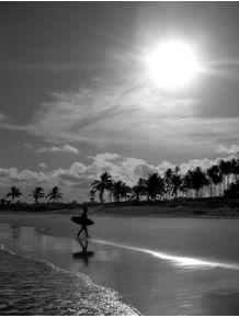 quadro-surfsol