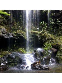 quadro-cachoeira