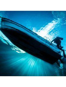 quadro-mergulhador