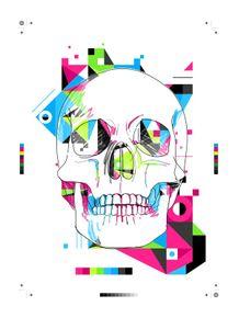 quadro-colour-skull