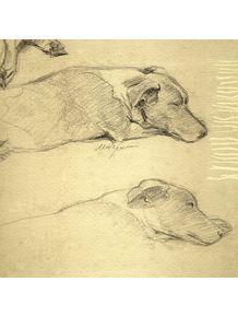 quadro-cachorro-dormindo