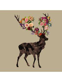 quadro-spring-itself