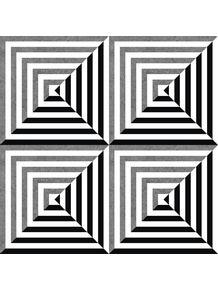 quadro-optic-asymmetry-modular