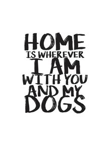 quadro-home-with-love-and-dogs