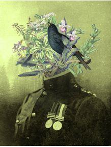 quadro-capitao-flora