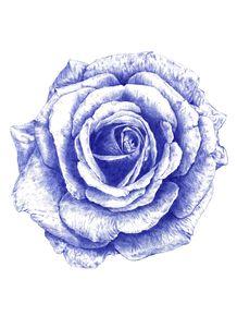 quadro-ballpoint-blue-rose