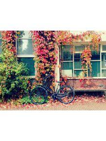 quadro-amsterdam-outono-ii