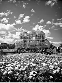 quadro-jardim-botanico-de-curitiba