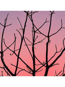 quadro-sampa-winter-sunset-ii