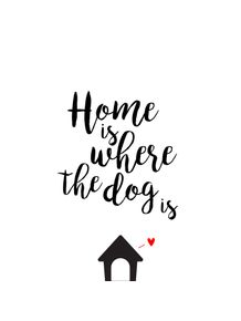 quadro-home-is-where-the-dog-is