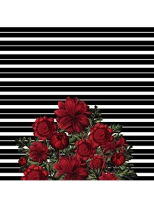 quadro-spring-pattern-lines-red