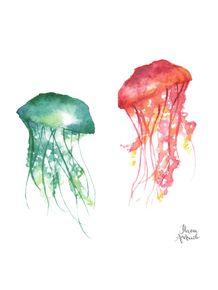 quadro-jellyfish-sea