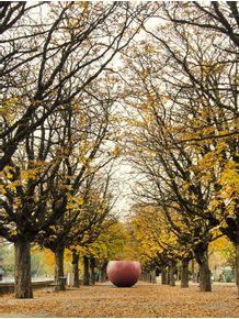 quadro-transbordar-de-outono
