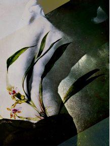 quadro-botanical-woman-2