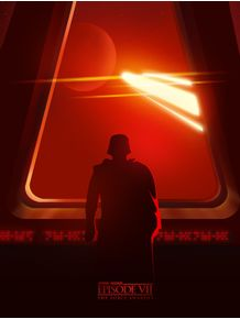 quadro-star-wars-the-force-is-awakens