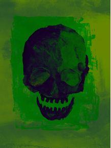 quadro-skull-plus-01