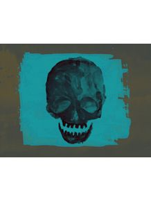 quadro-skull-plus-06